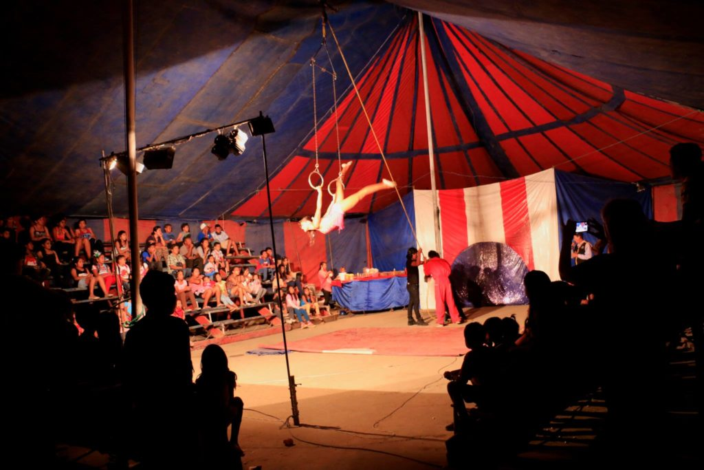 Circus for everyone